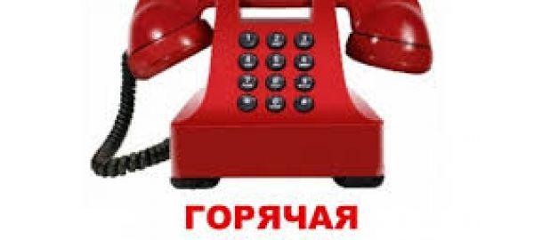 Телефоны «горячей линии» по организации обучения с применением дистанционных образовательных технологий